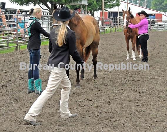 Bureau County 4-H Fair Horse Show